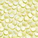 Lemon Fizz-MEP17