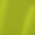 Shimmer Capa Green