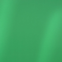 Shimmer Spring Green
